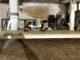 DeWalt Werkzeuge - Kappsäge und Akkuschrauber